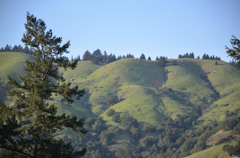 37 Conifer Way, Woodacre, CA 94973