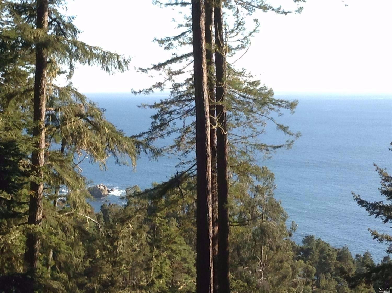 22138 Umland Circle, Timber Cove, CA 95450
