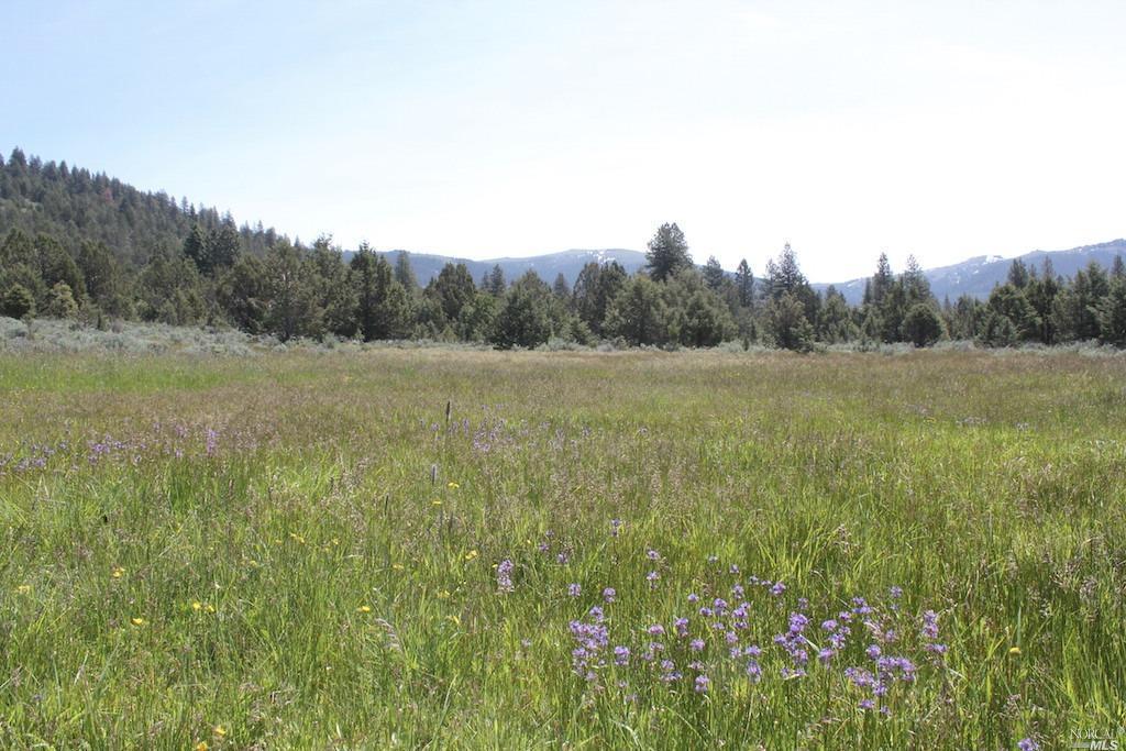 0 Surprise Valley Road, Alturas, CA 96101