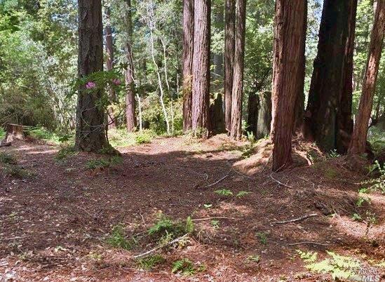 399 Lumberjack Close, The Sea Ranch, CA 95497