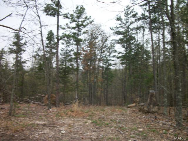 17 Eagle Lane, Fredericktown, MO 63645