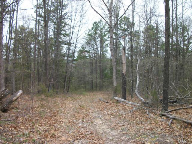 6 Red Hawk Drive, Fredericktown, MO 63645