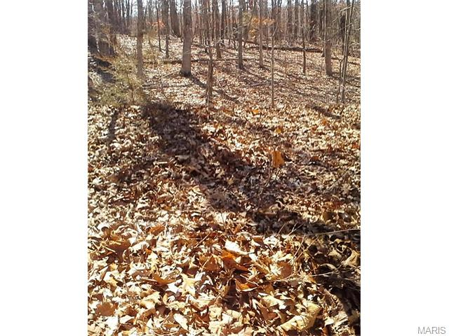 9 9 Deep Woods Drive, St Clair, MO 63077