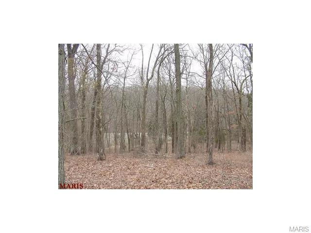 300 Long View Trail (Lot 25), Festus, MO 63028
