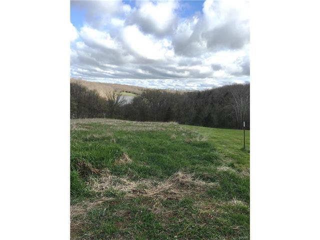361 Buttonwood Tree Lane, Elsberry, MO 63343