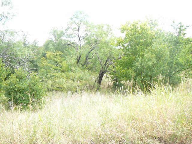 122 SLEEPY Meadow Drive, Runaway Bay, Texas 76426