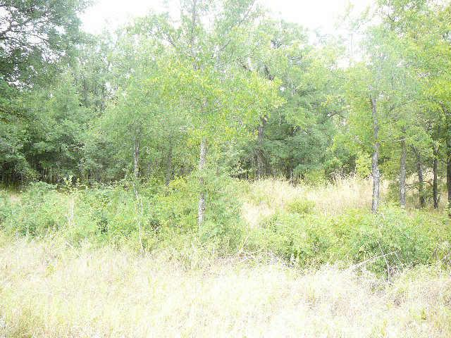 112 SHADY Springs Drive, Runaway bay, Texas 76426