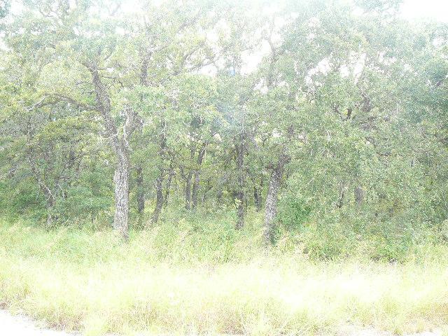 512 SLEEPY Meadow Drive, Runaway Bay, Texas 76426