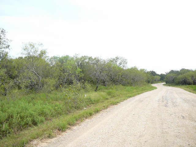 110 WILDFLOWER Court, Runaway bay, Texas 76426