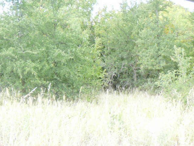 716 SHADY OAKS Drive, Runaway Bay, Texas 76426