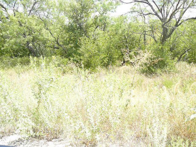 709 SHADY OAKS Drive, Runaway Bay, Texas 76426