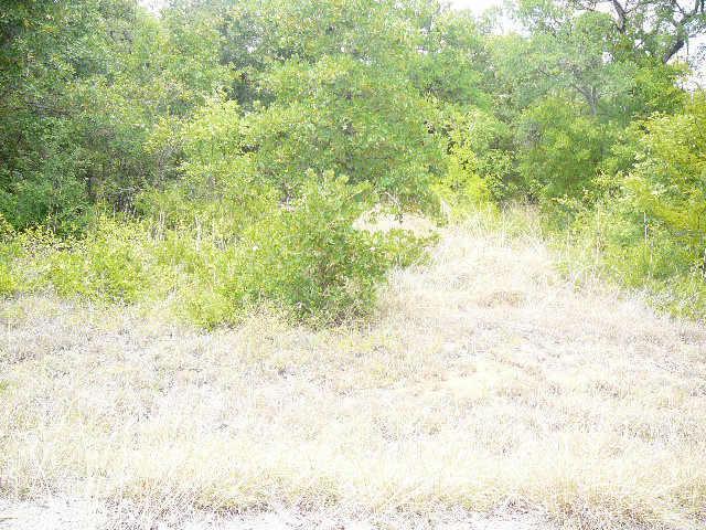 102 GREENWAY Court, Runaway Bay, Texas 76426
