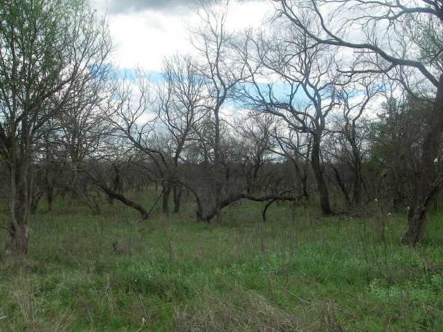 23 Spring Hill Court, Runaway bay, Texas 76426