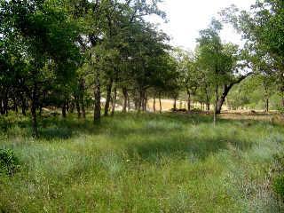 163 Ridgeline, Chico, Texas 76431