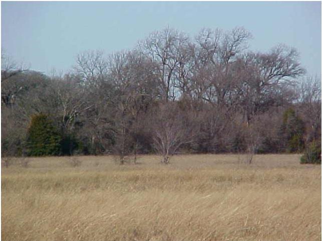 0 Robinett Road, Waxahachie, Texas 75165
