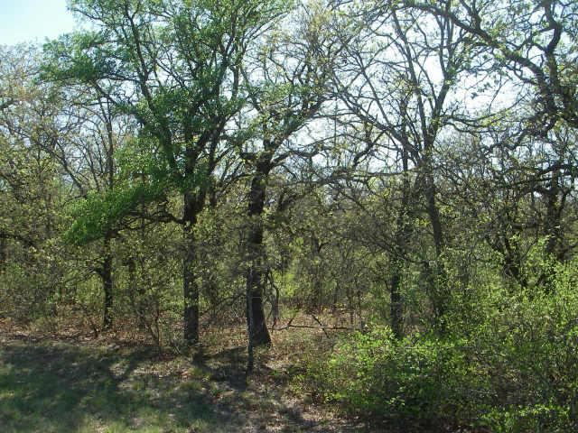 6 Lindsey Lane, Runaway Bay, Texas 76426