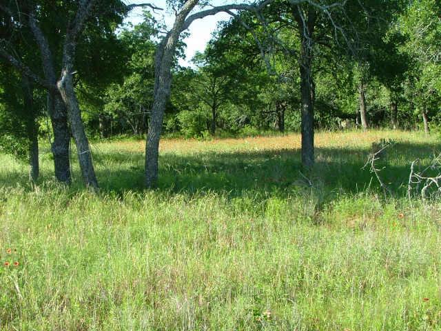 228 Ridgeline Drive, Chico, Texas 76431