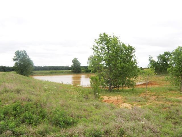 0 County Road 433, De leon, Texas 76444