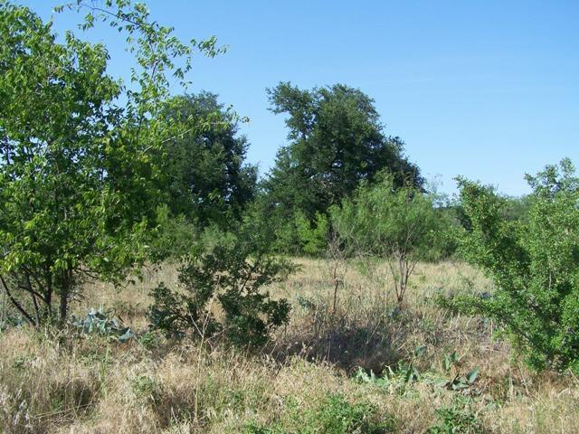 0 Mercers Personal Roa Road, Comanche, Texas 76442