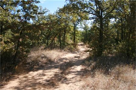 0 West Hwy180 Highway, Mineral Wells, Texas 76067