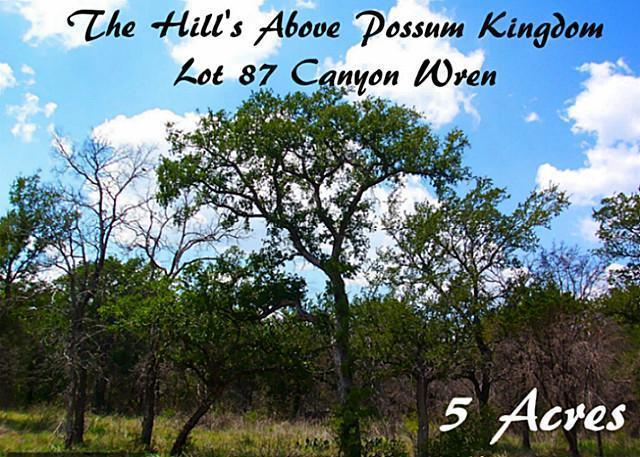 87 Canyon Wren, Possum Kingdom Lake, Texas 76449