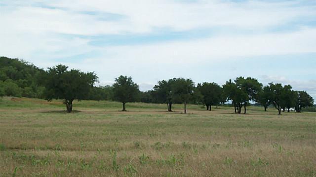 0 Garrett Morris Parkway, Mineral Wells, Texas 76067
