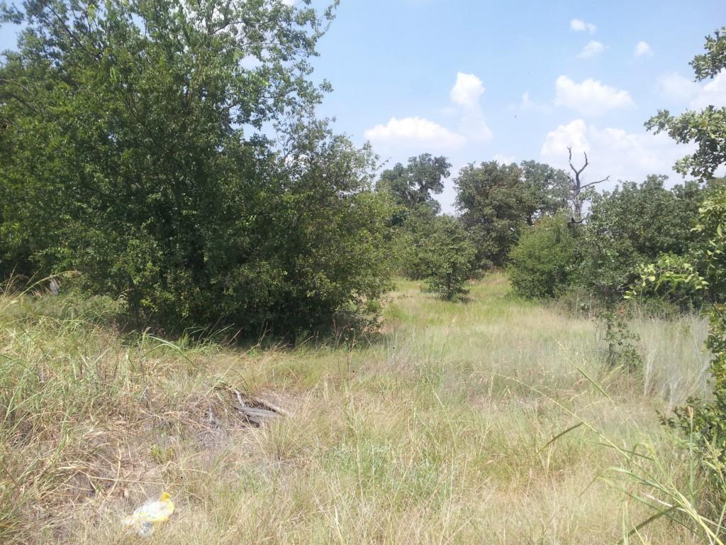 10 Club View Drive, Bowie, Texas 76230
