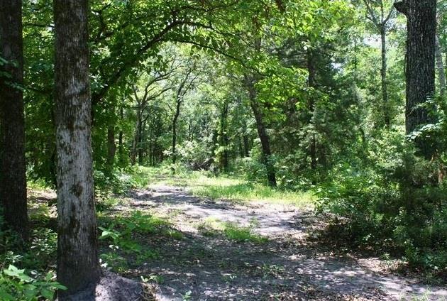 County Road 4269, Emory, Texas 75440