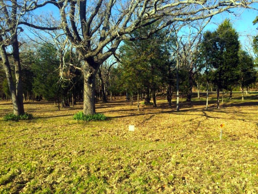 65 Jackson Circle, Kerens, Texas 75144