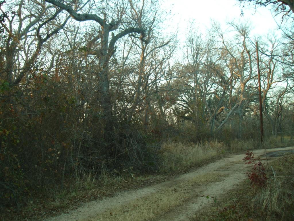 cr 420 Road, May, Texas 76801