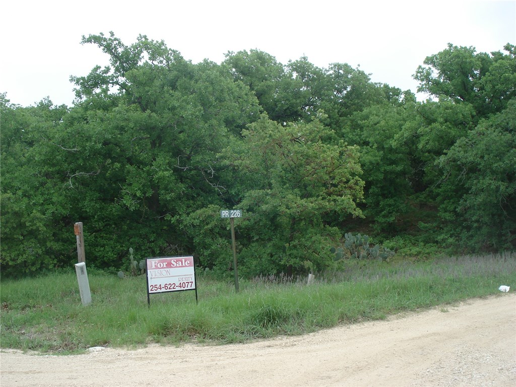 Private Road226 - Hcr 2127, Whitney, Texas 76692