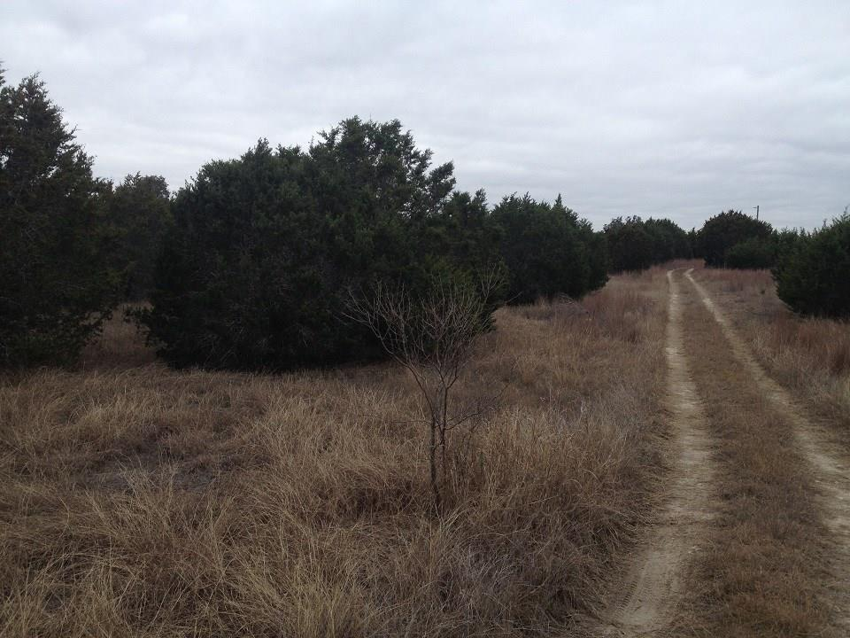 County Road 142, No City, Texas 76528