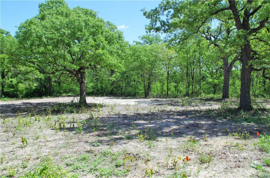Timber Creek Drive, Stephenville, Texas 76401