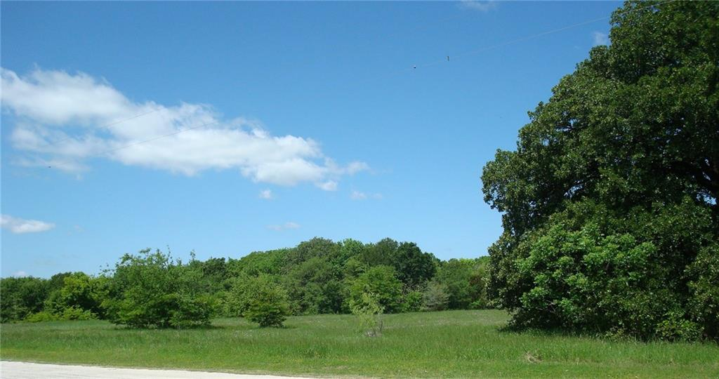 4 Sweetwater Trail, Kerens, Texas 75144