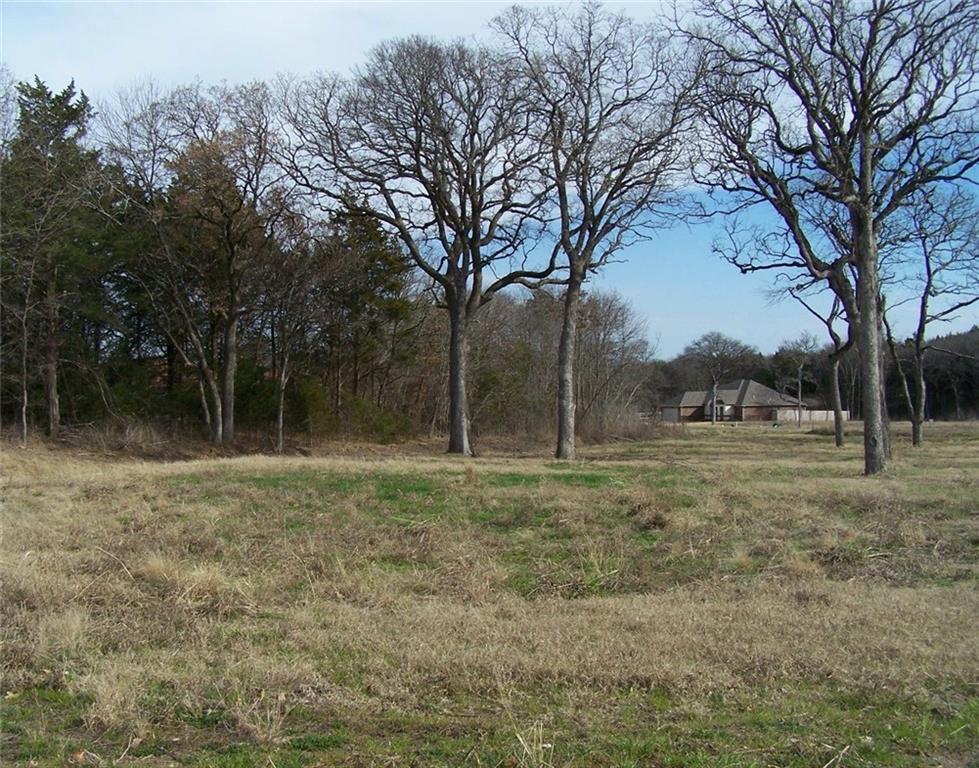 160 Bent Oak Drive, Pottsboro, Texas 75076