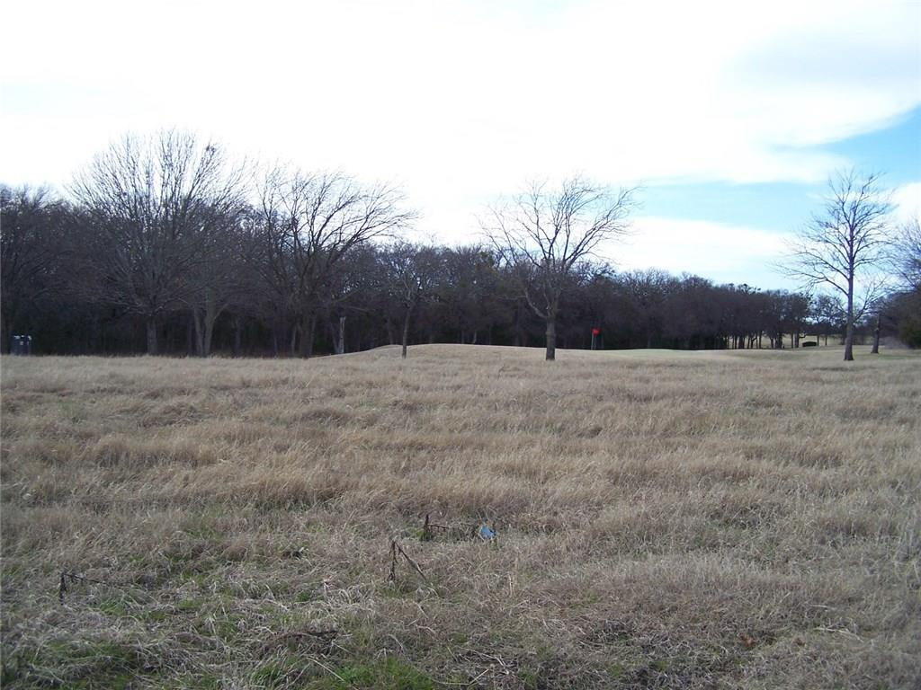 285 Bent Oak Drive, Pottsboro, Texas 75076
