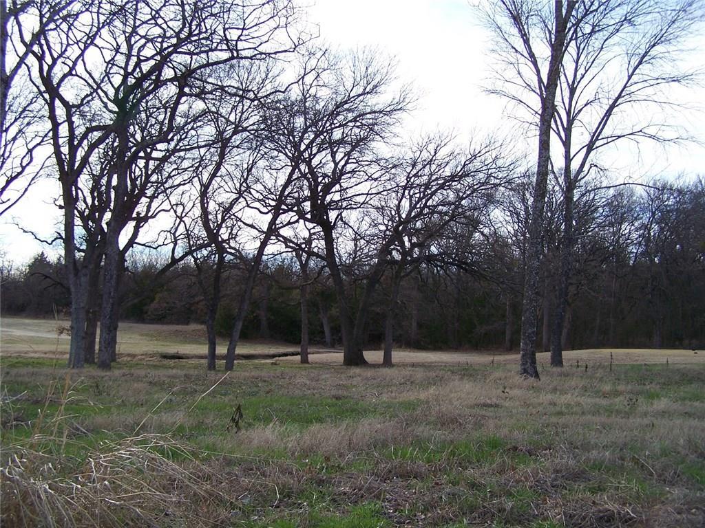 229 Bent Oak Drive, Pottsboro, Texas 75076