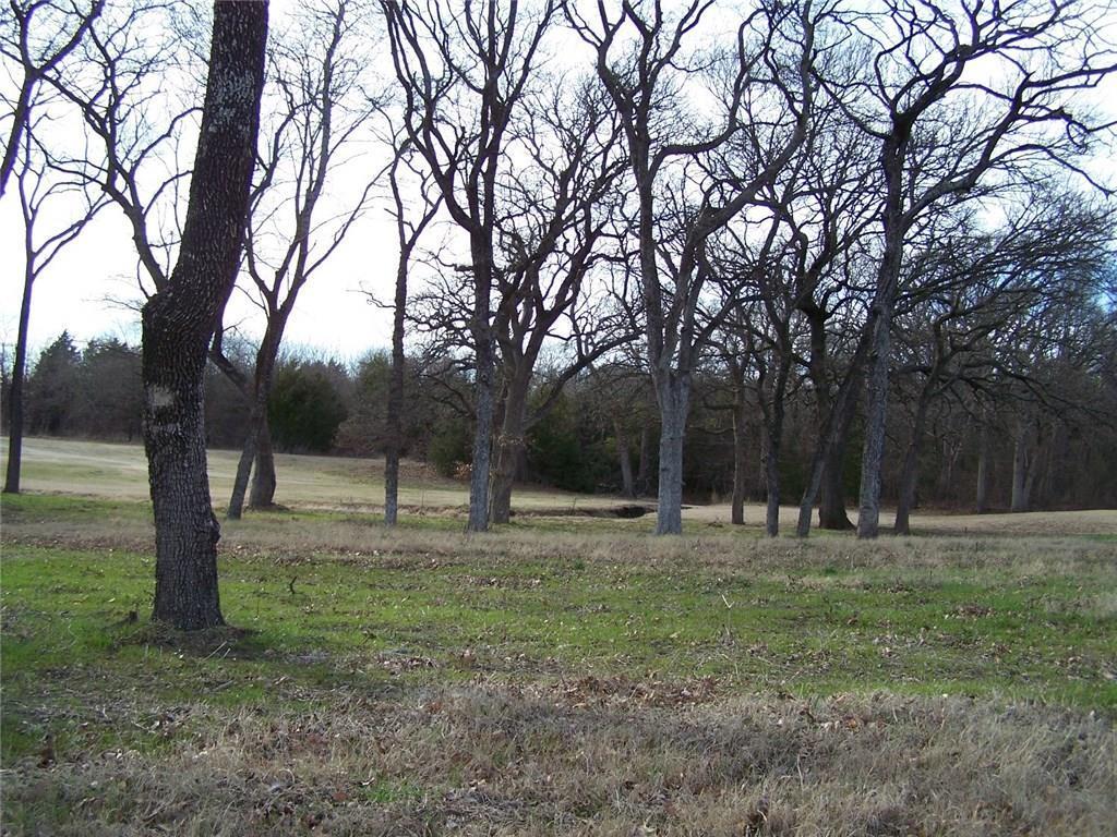 215 Bent Oak Drive, Pottsboro, Texas 75076