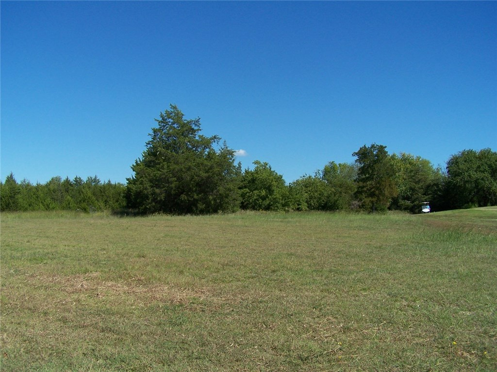 3 EAGLE CHASE Lane, Pottsboro, Texas 75076