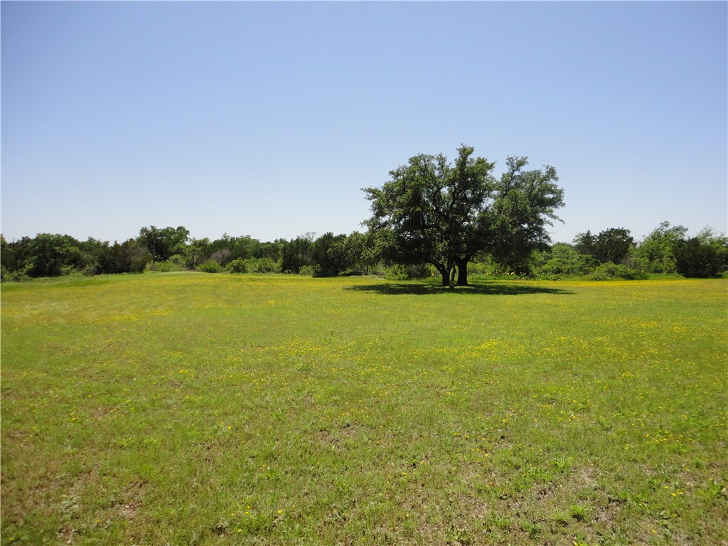 2802 Gardner Road, Hudson Oaks, Texas 76087