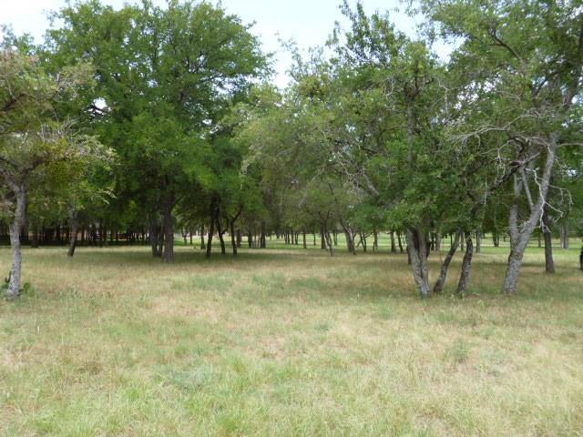 13013 Crestwood Drive, Whitney, Texas 76692
