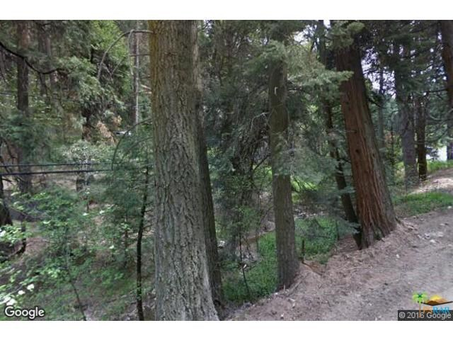 669 COMMUNITY Drive, Twin Peaks, CA 92352