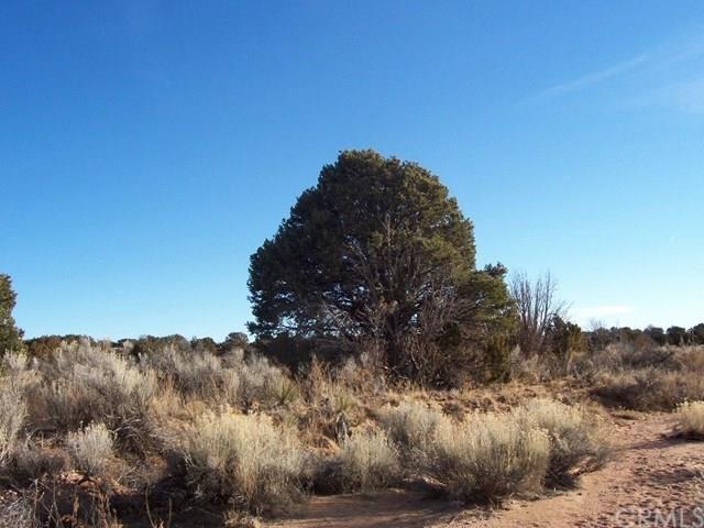 0 Palm Canyon Drive, Pinyon Pines, CA