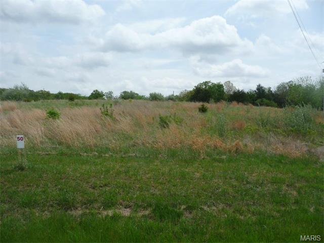 50 Lick Creek Estates, Perry, MO 63462