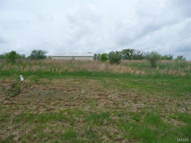 53 Lick Creek Estates, Perry, MO 63462