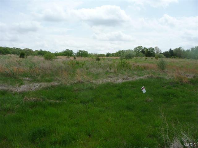 49 Lick Creek Estates, Perry, MO 63462