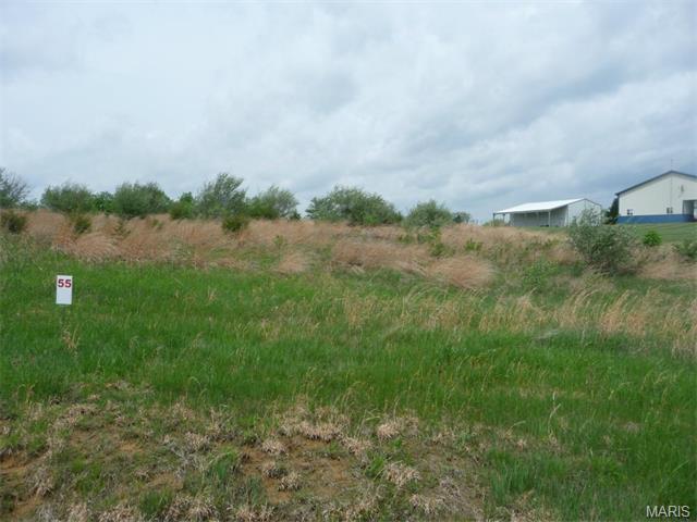 55 Lick Creek Estates, Perry, MO 63462