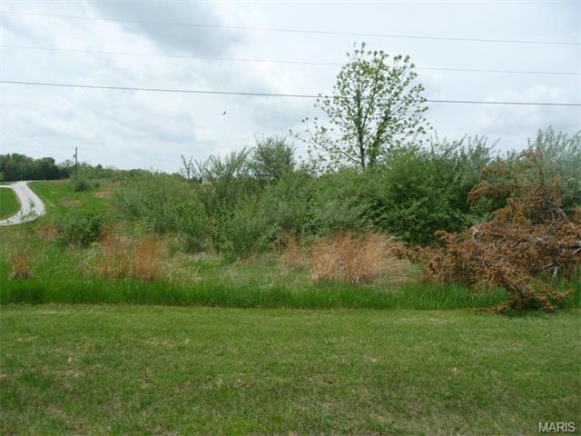 56 Lick Creek Estates, Perry, MO 63462