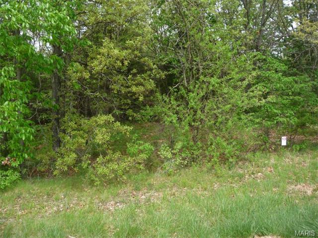 13 Lick Creek Estates, Perry, MO 63462