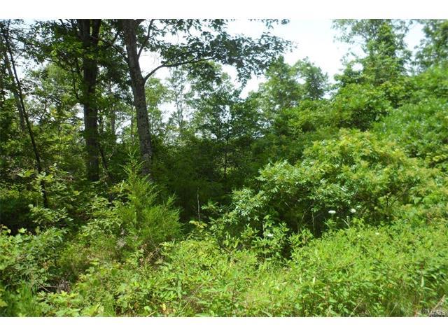 0 Woodland Hills, Irondale, MO 63648